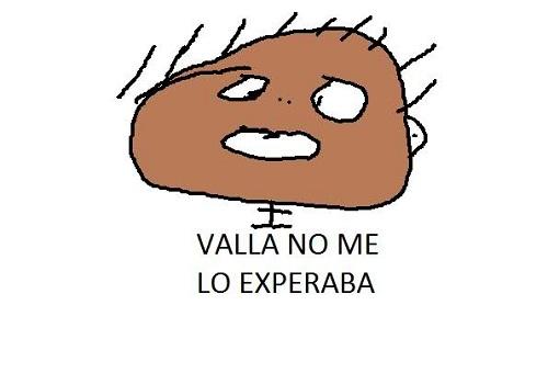 valla_no_me_lo_experaba1.jpg