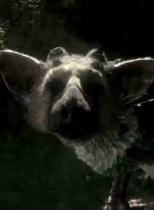 The Last Guardian para PS3 aparece en PSN