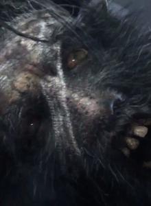 Filtrado metraje de Bloodborne, el prometedor exclusivo de PS4
