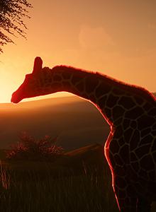Planet Zoo y el testigo de Zoo Tycoon