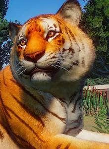 Análisis Planet Zoo: Gestión con claroscuros